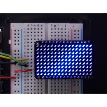 LED Charlieplexed Matrix - 9x16 LEDs - Bleu