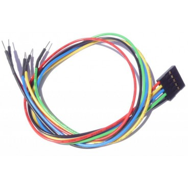 Cable 30cm 5 points femelle - male