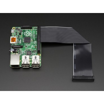 Cable de downgrade GPIO pour Raspberry Pi Plus